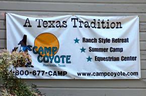 Camp coyote